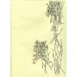 GESTACIÓN DE UN SENTIMIENTO Tinta sobre papel 29,5 x 21 cm